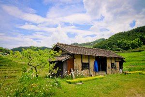 田んぼの中の小屋