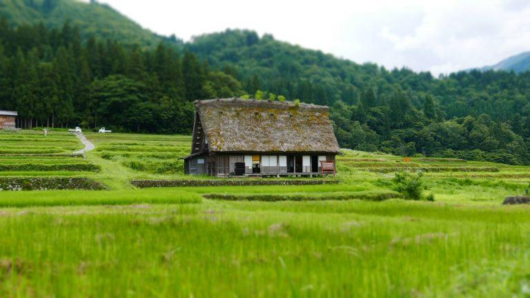 田んぼの中の一軒家