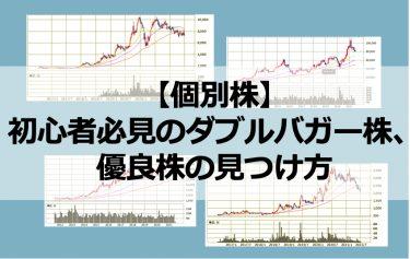 【個別株】初心者必見のダブルバガー(2倍株)、優良株の見つけ方